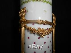 Old Porcelain Vase Sèvres Polychrome Decor Flowers Bronze Mount Nineteenth